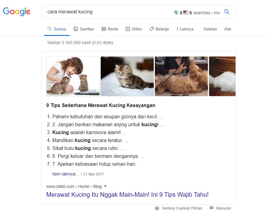 cara merawat kuncing keyword